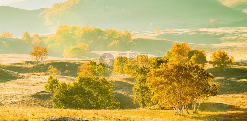 逆光下的秋季风光图片