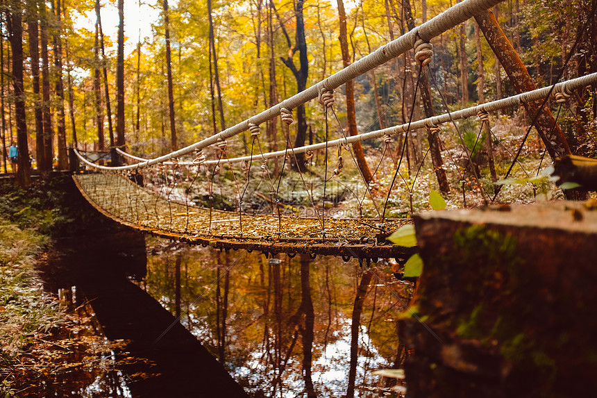 秋天的旅行图片