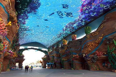 珠海长隆海洋世界图片