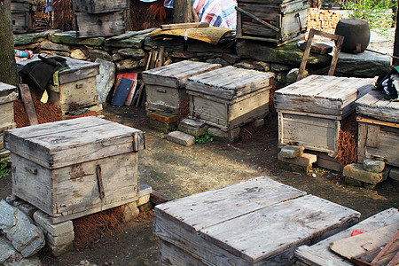 养蜂人的蜂箱图片