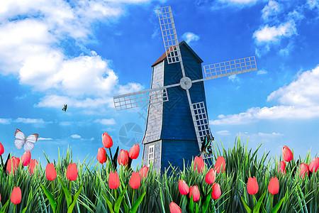 风车下的郁金香图片