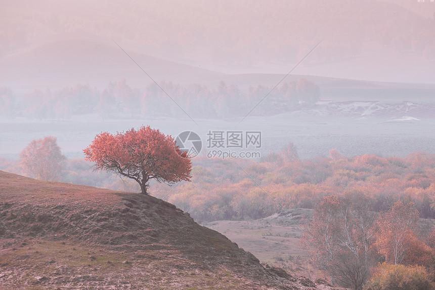 乌兰布统草原梦幻之地图片