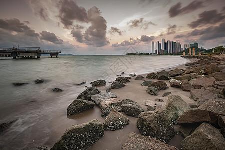 深圳湾之晨图片