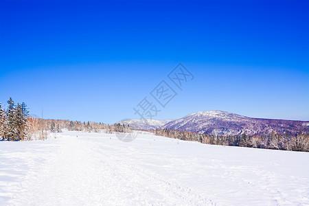 黑龙江雪乡洋草山图片