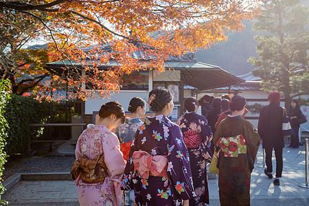 天龙寺赏秋图片