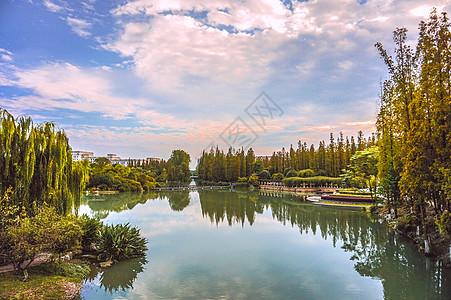 秋天池塘一景图片