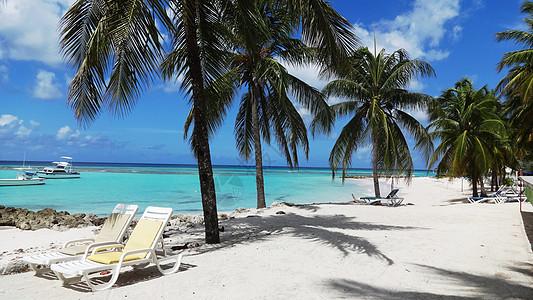 巴巴多斯美丽的海与沙滩风光图片