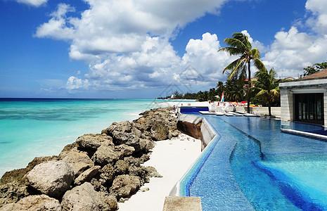 巴巴多斯美丽风光海边泳池图片