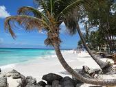 巴巴多斯美丽的海与沙滩风光奇秀海景迷人是驰名世界的海岛度假胜地501067288图片