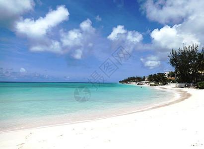 巴巴多斯美丽的白沙滩图片