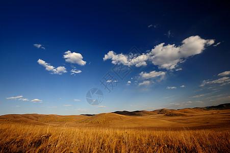 河北坝上草原图片