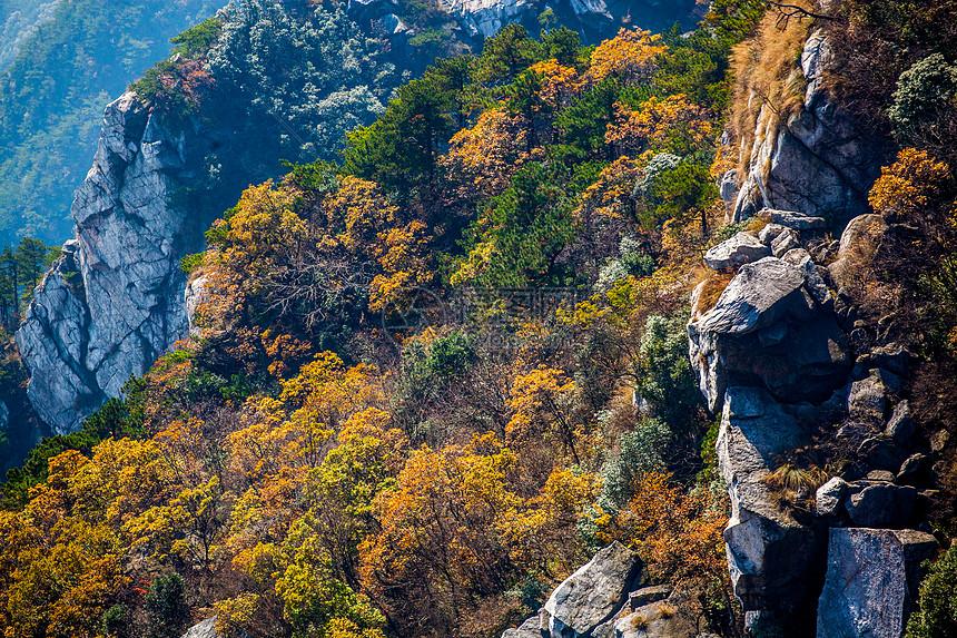 江西九江秋季庐山图片