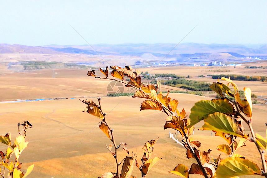 内蒙古的秋天图片