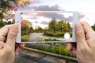 手机拍摄图片