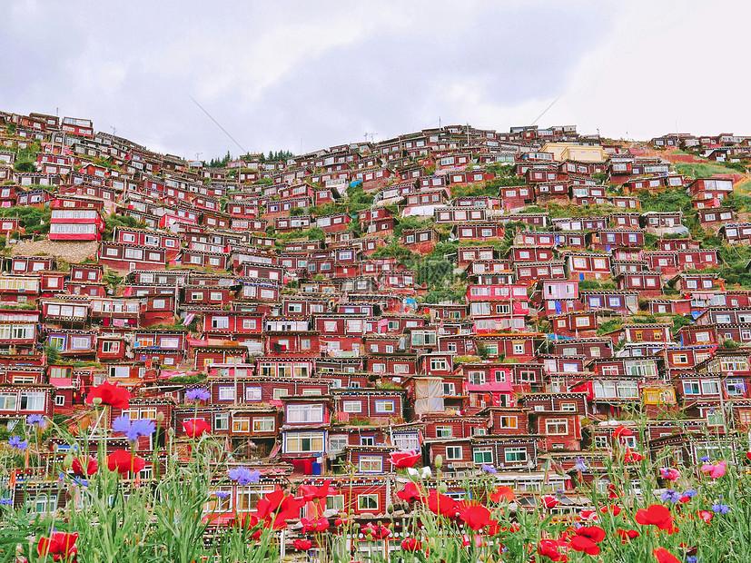 色达喇荣五明佛学院的绛色房屋群图片