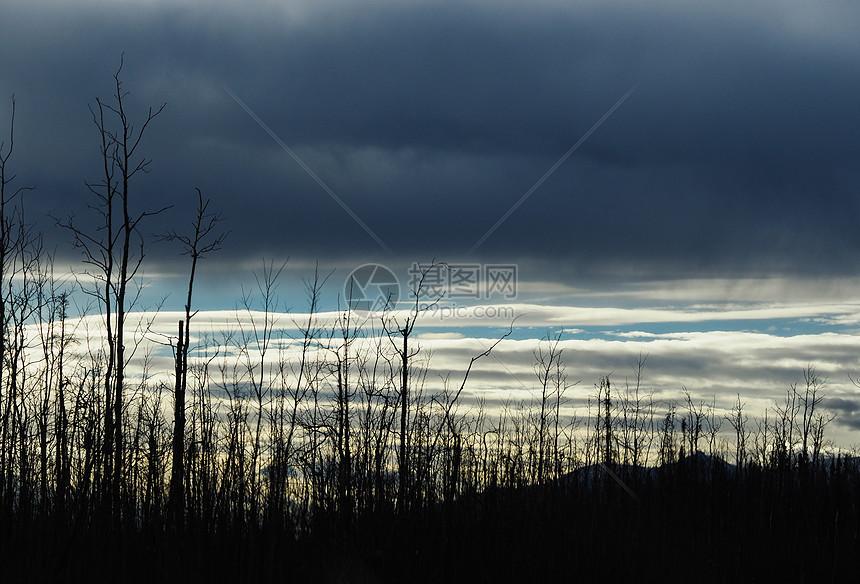 云素材图片