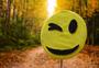 秋天的笑脸图片