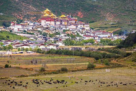 云南迪庆香格里拉松赞林寺图片