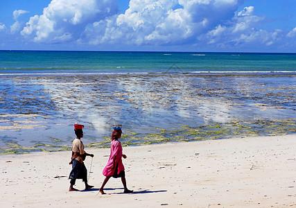 莫桑比克海峡风光珊瑚滩涂退潮后赶海人图片