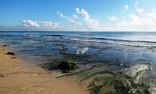 莫桑比克海峡风光珊瑚礁海滩退潮时图片