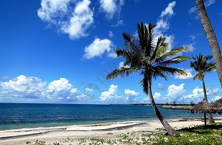 莫桑比克海峡风光蓝天白云椰树海风图片