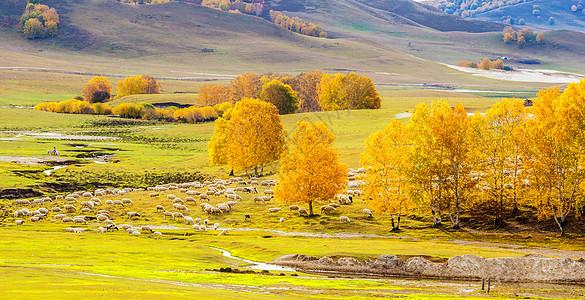 秋季草原上的羊群图片