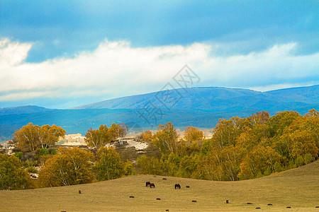 内蒙古自治区乌兰布统景区秋色图片