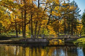俄罗斯最美皇家园林叶卡捷琳娜宫秋色图片