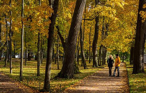 俄罗斯圣彼得堡著名景点夏宫下花园园林秋色图片