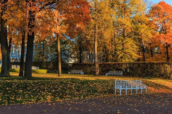 俄罗斯秋季最美的皇家园林叶卡捷琳娜宫花园秋色图片