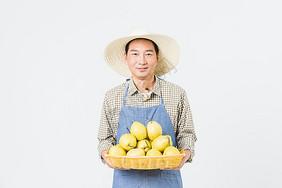 果农梨子丰收图片