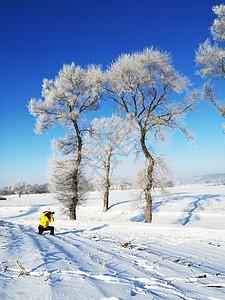 吉林雾凇岛跪在美丽的冰雪天地图片