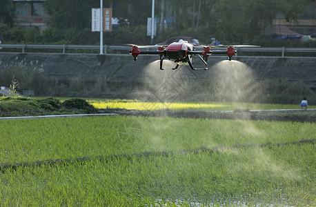 无人机农业植保无人机农田作业图片