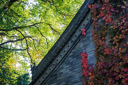 西安小雁塔的古式建筑图片