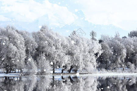 冬季雾凇图片
