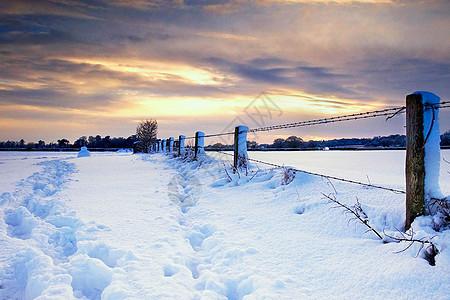 冬季雪景图片