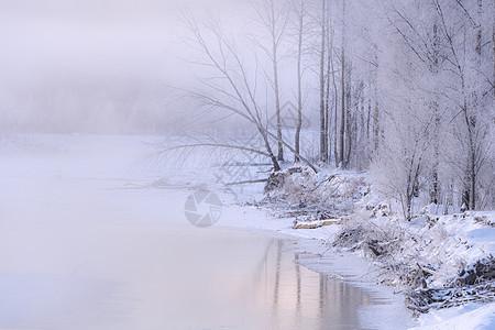 呼伦贝尔根河风光系列图片
