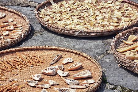 农家晒冬笋图片