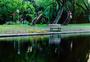 河边长椅图片