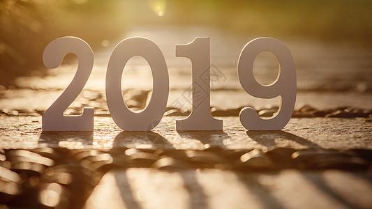 新年元旦2019光影静物图片