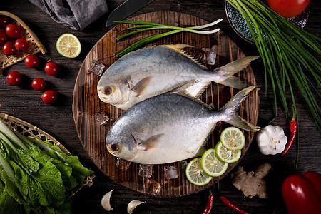 金鲳鱼图片