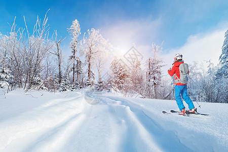 冬天滑雪图片