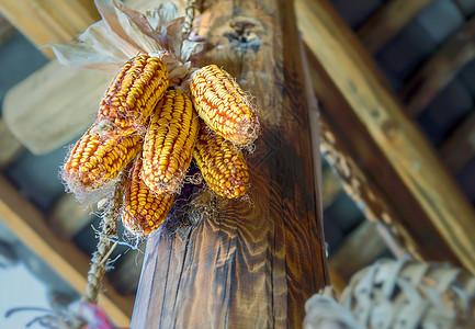 农家房梁上的老玉米图片