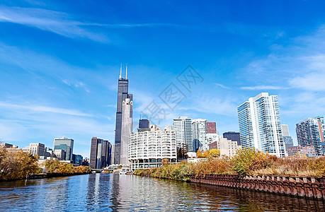 芝加哥城市建筑群图片