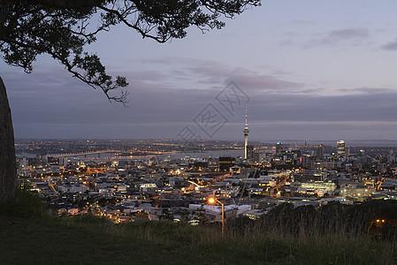 新西兰奥克兰夜景 城市天际线图片