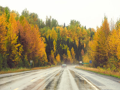 阿拉斯加州斯特灵公路雨天图片