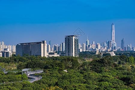 深圳香蜜公园图片