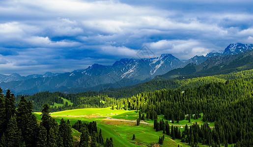 新疆天山下的草原唯美风景图片