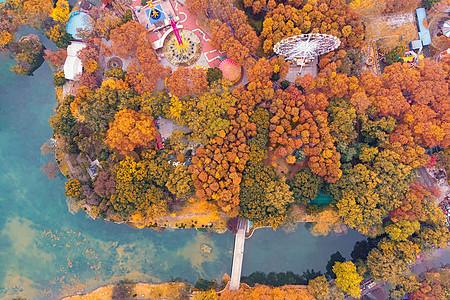 俯瞰武汉城市公园的秋天图片