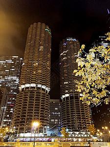 芝加哥箭牌大厦图片